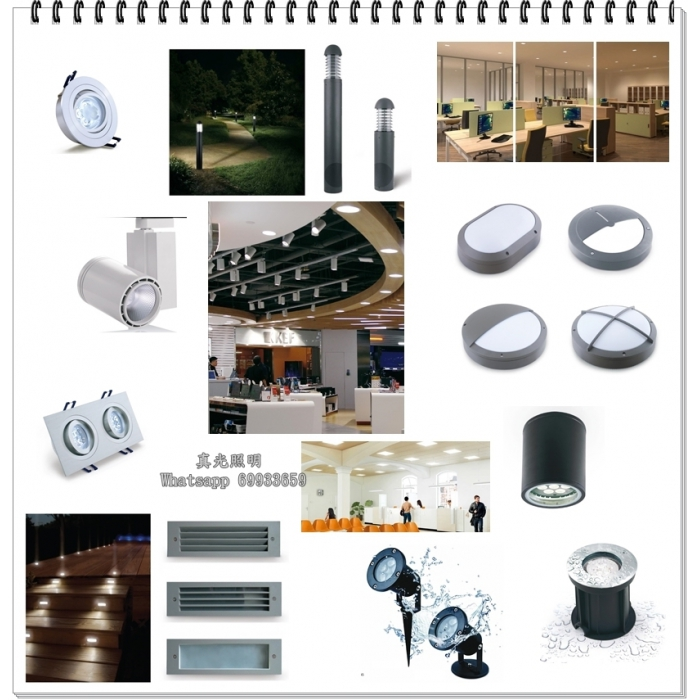 真光照明燈飾目錄 Lighting Catalogue By True Lighting