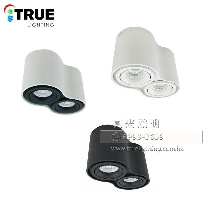 盒仔燈 合仔燈 GU10 LED Box Celling Light GD5610x2
