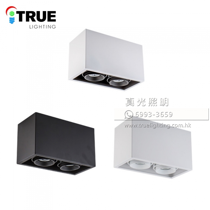 盒仔燈(明裝雙頭) GU10 LED Surface Mount Downlight