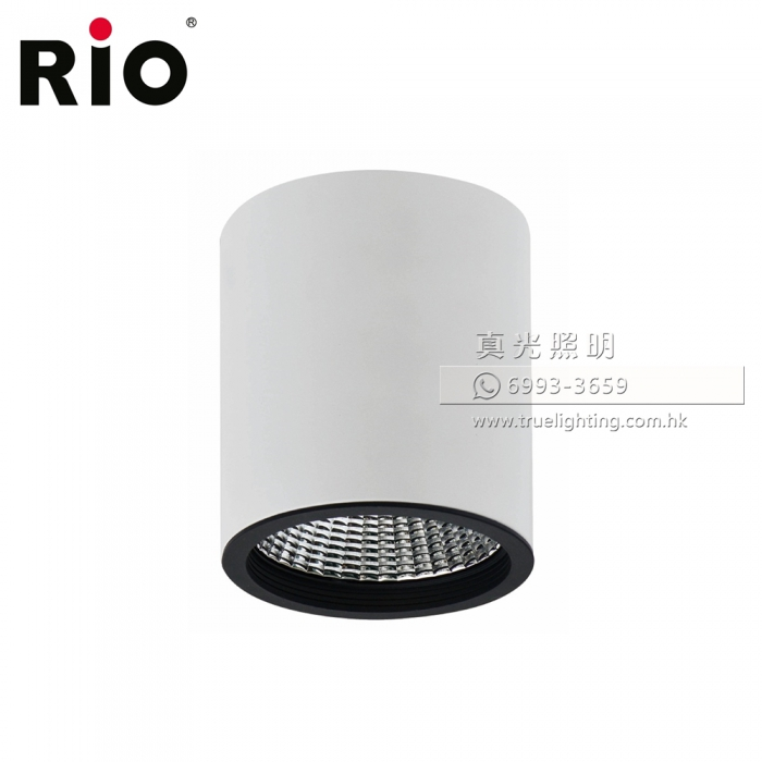 偉澳照明 筒燈 31W LED Downlight By RIO LSC203
