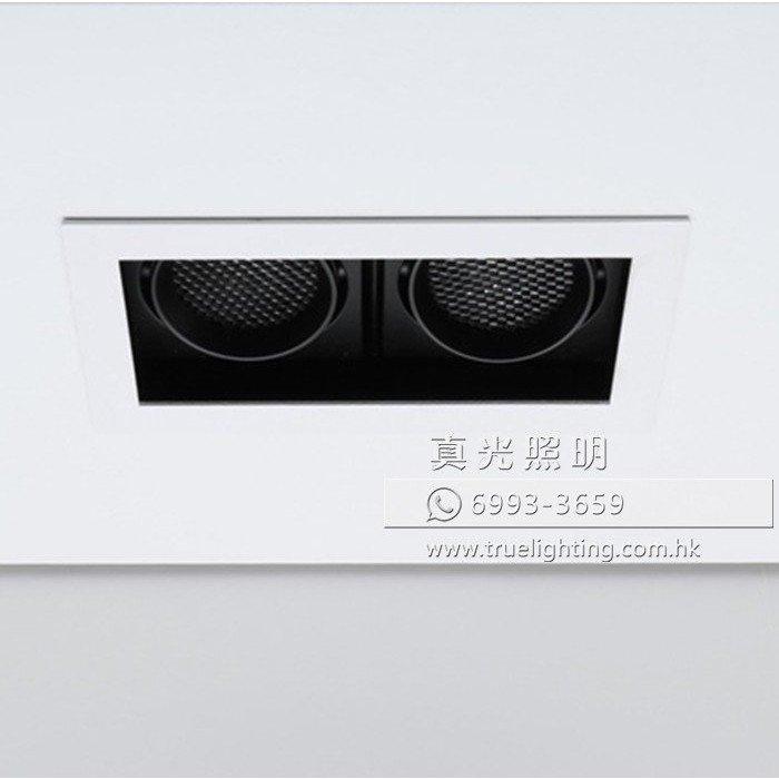 天花射燈(暗裝) LED Recessed Downlight RM1002